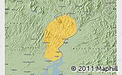 Savanna Style Map of Dandong Shiqu