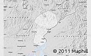Silver Style Map of Dandong Shiqu