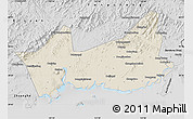 Shaded Relief Map of Donggou, desaturated