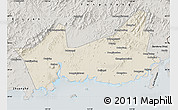 Shaded Relief Map of Donggou, semi-desaturated