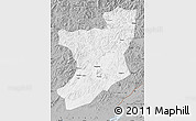 Gray Map of Fengcheng