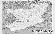 Gray Panoramic Map of Fengcheng