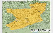 Savanna Style Panoramic Map of Fengcheng