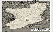 Shaded Relief Panoramic Map of Fengcheng, darken