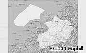 Gray 3D Map of Liaoyang