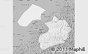 Gray Map of Liaoyang