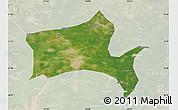 Satellite Map of Panshan, lighten