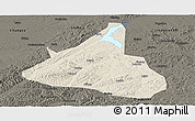 Shaded Relief Panoramic Map of Xifeng, darken
