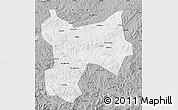 Gray Map of Xinbin