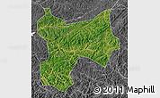 Satellite Map of Xinbin, desaturated