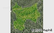 Satellite Map of Xinbin, semi-desaturated