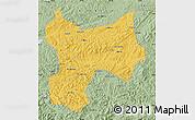 Savanna Style Map of Xinbin