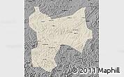 Shaded Relief Map of Xinbin, darken, desaturated