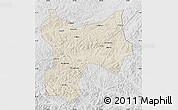 Shaded Relief Map of Xinbin, lighten, desaturated