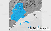 Political Map of Xinjin, desaturated