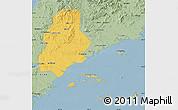 Savanna Style Map of Xinjin