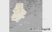 Shaded Relief Map of Xinjin, darken, desaturated