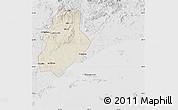 Shaded Relief Map of Xinjin, lighten, desaturated