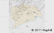 Shaded Relief Map of Zhuanghe, lighten, desaturated
