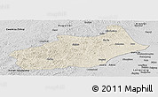 Shaded Relief Panoramic Map of Butha Qi, desaturated