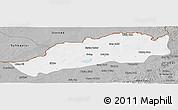 Gray Panoramic Map of Dong Ujimqin Qi