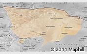 Satellite Map of Ejin Qi, desaturated