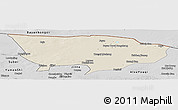Shaded Relief Panoramic Map of Ejin Qi, desaturated