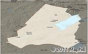 Shaded Relief Panoramic Map of Xinbarag Youqi, darken