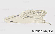 Shaded Relief Panoramic Map of Guinan, single color outside