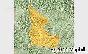 Savanna Style Map of Huangzhong