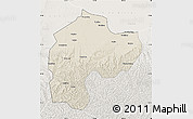 Shaded Relief Map of Dingbian, lighten