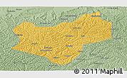 Savanna Style Panoramic Map of Wuqi