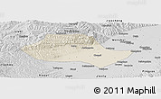 Shaded Relief Panoramic Map of Fenyang, desaturated
