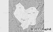 Gray Map of Lin Xian