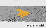 Political Panoramic Map of Nanxi, desaturated