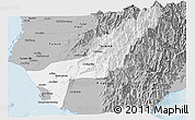 Gray Panoramic Map of Gaoxiong