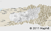 Classic Style Panoramic Map of Nantou