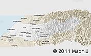Classic Style Panoramic Map of Taizhong