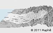 Gray Panoramic Map of Taizhong
