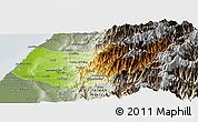 Physical Panoramic Map of Taizhong, semi-desaturated