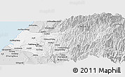 Silver Style Panoramic Map of Taizhong