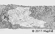 Gray Panoramic Map of Dayao