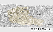 Shaded Relief Panoramic Map of Dayao, desaturated