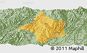 Savanna Style Panoramic Map of Lincang