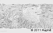 Silver Style Panoramic Map of Nanhua