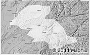 Gray 3D Map of Shizong