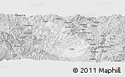 Silver Style Panoramic Map of Yongren