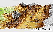 Physical Panoramic Map of Risaralda