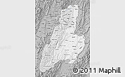 Gray Map of Tolima