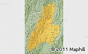 Savanna Style Map of Tolima